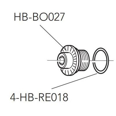 Campagnolo Fixing Bolt For Front Hub Axle HB-BO027